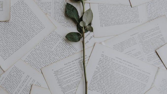 rose på papir, begravelse
