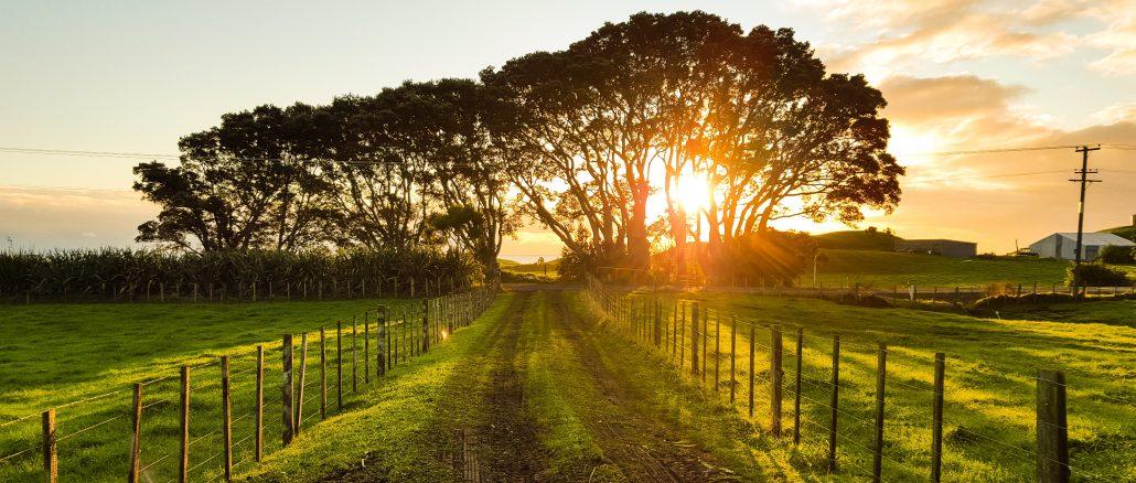 Leder I efter hus på landet? Husk disse tre vigtige tips.